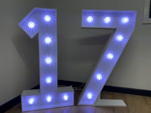 Light Up Numbers 17